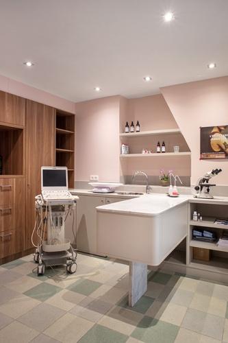 Clinique VETINPARIS : IMG_3013