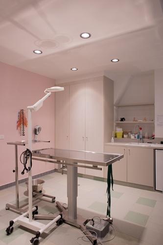 Clinique VETINPARIS : IMG_3055
