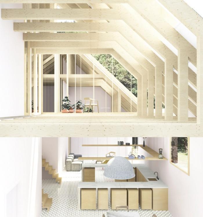 Transformation d'une grange en habitation, transformation de la toiture : image_projet_mini_94740